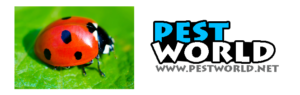 Pests World